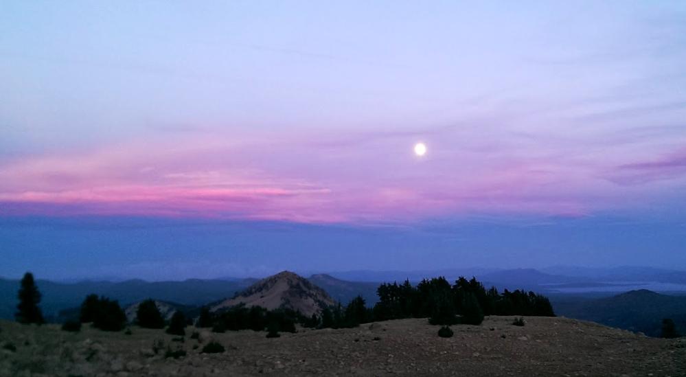 moonlit-twilight
